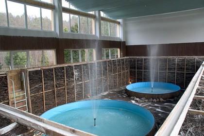 Inhalatorium w Sanatorium Leśnik - Sopot